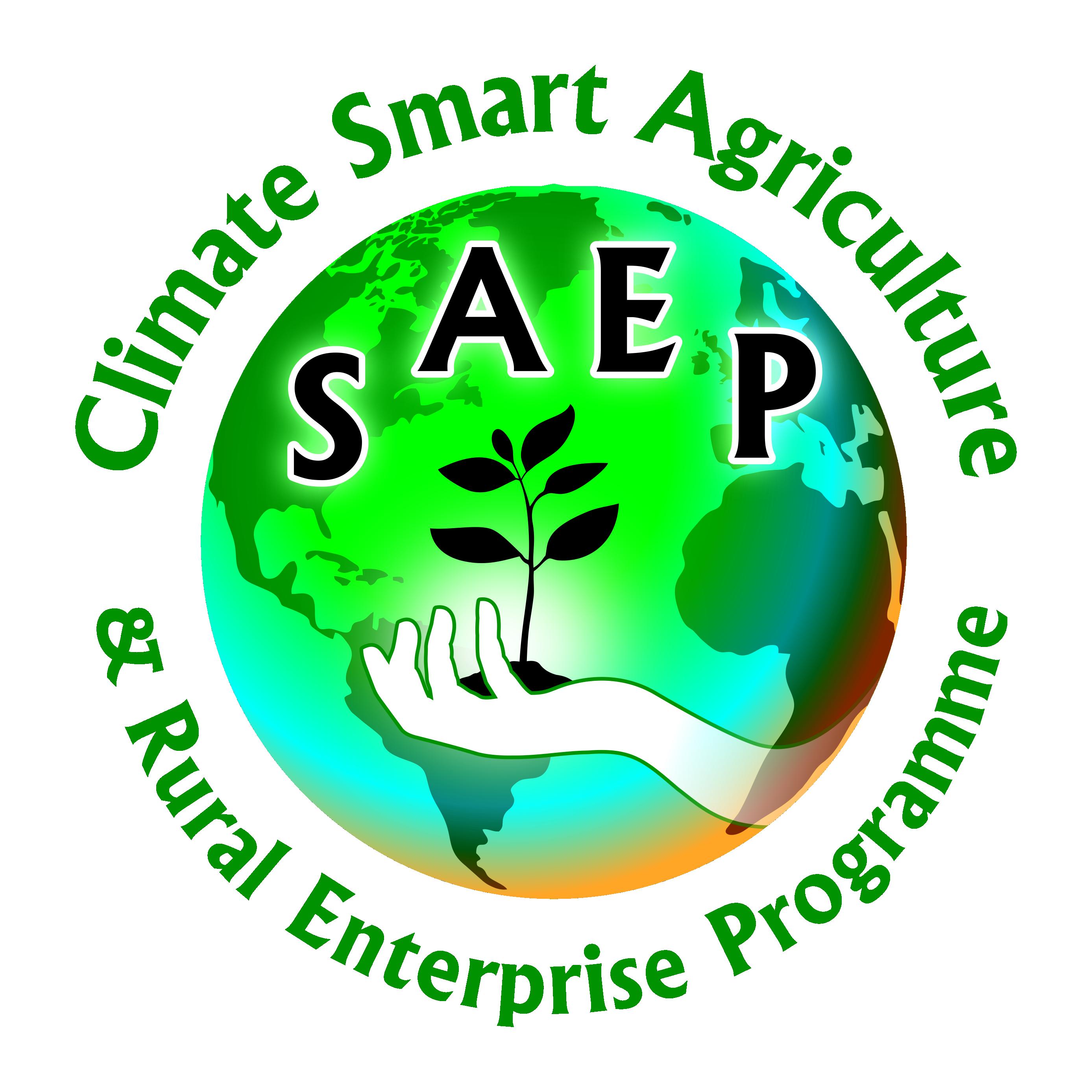 SAEP (Logo re)