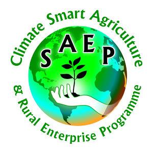 SAEP-(Logo-re)